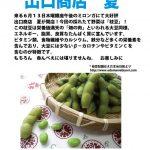 6.13 Thur 銀座午後のミロンガ 枝豆編